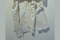 fieldwork (1999)