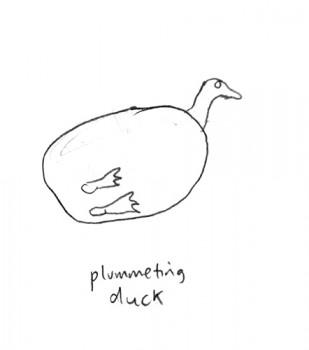 plummeting duck