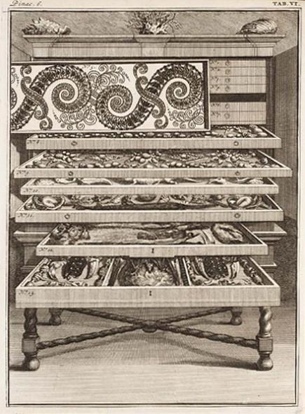 Levinus Vincent, Elenchus tabularum, pinacothecarum, atque nonnullorum cimeliorum, Amsterdam: 1719. An eighteenth-century cabinet of curiosities