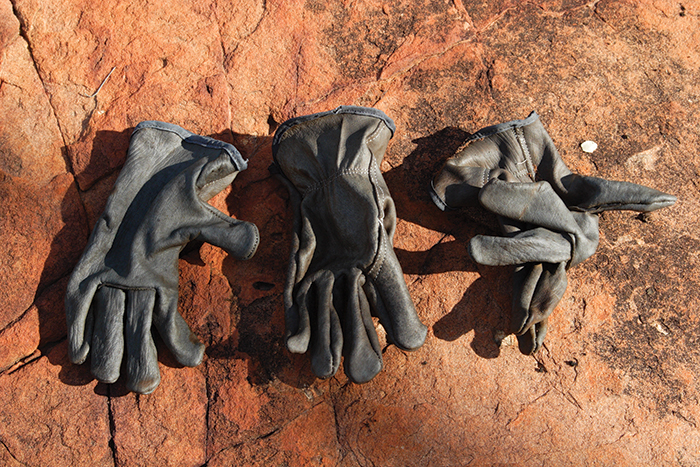 Strandings: fieldwork/fieldwalking, 44 works in the walkingcountry: gloves, 2003-2006