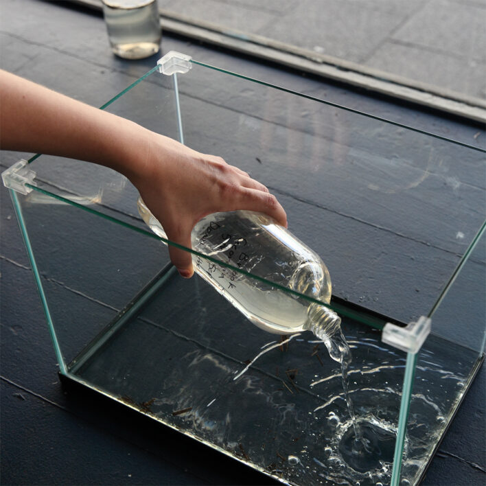 water being tipped into an aquarium