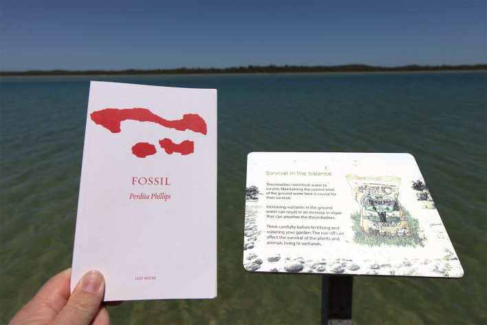 Fossil next to thrombolite sign at Lake Clifton
