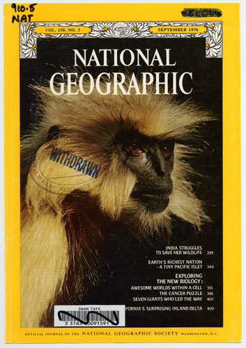 national geographic monkey