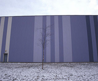 purple warehouse