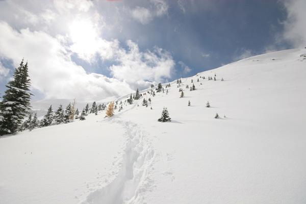 towards top of Burstall Pass
