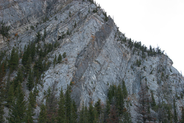Tunnel Mountain cliff