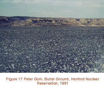 radioactive landscape